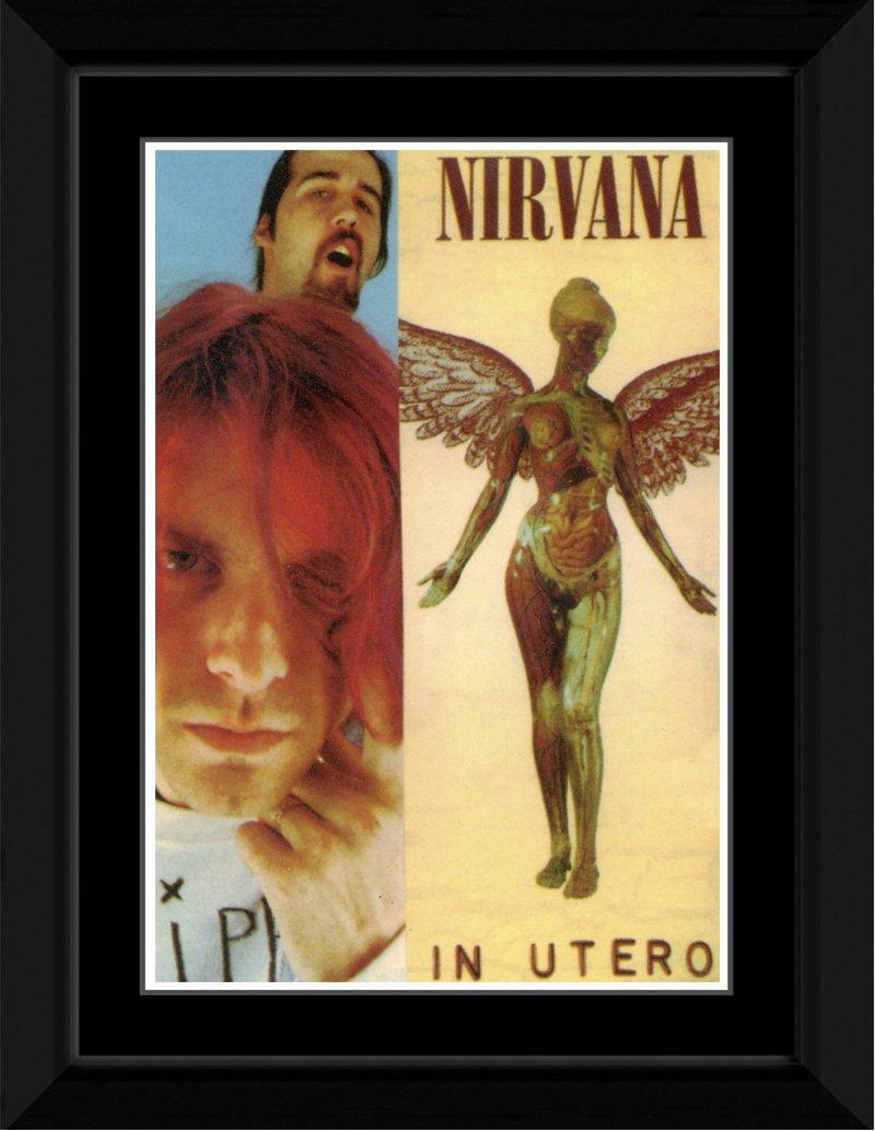 Amazon.com: Stick It On Your Wall Nirvana - In Utero Framed Mini ...