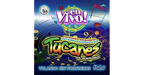 Amazon.com: Volando Sin Fronteras Vol. 5. Música de ...