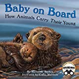 Baby on Board: How Animals Carry Their Young