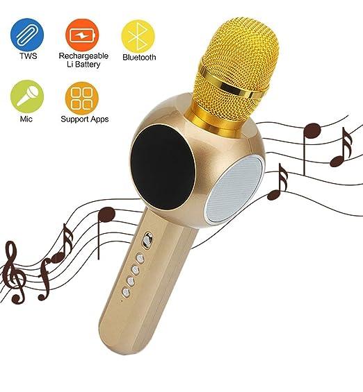 Mr. Fragile Karaoke portátil con micrófono inalámbrico Bluetooth ...