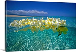 Plumeria Lei Floating On Ocean Surface Canvas Wall Art Print, Hawaii Artwork