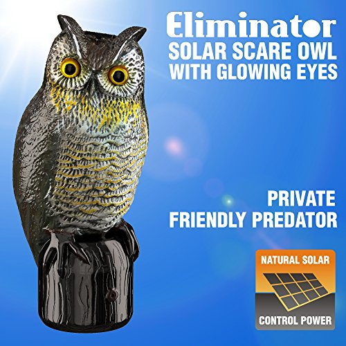 Eliminator Scarecrow Owl Decoy with Scary Lighted Eyes and Frightening Sound - Solar Powered & Motion Activated - Realistic Predator Scares Away and Repels All Birds, Rabbits, Squirrels & other Pests