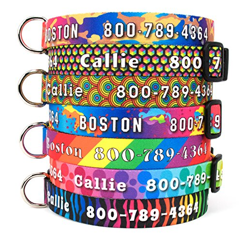 (Buttonsmith Rainbow Dog Collar - Fadeproof Permanently Bonded Printing, Military Grade Rustproof Buckle, Resistant to Odors & Mildew, Choice of 6 Sizes, Made in The USA)