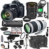 Canon EOS 6D Mark II With 24-70mm f/2.8 L IS II USM + 100-400mm f/4.5-5.6 L IS II USM + 128GB Memory + Pro Battery Bundle + Power Grip + Microphone + TTL Speed Light + Pro Filters,(24pc Bundle)