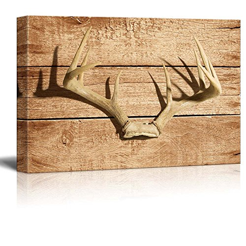 Wall26   Rustic Canvas Wall Art   Deer Antler   Giclee Print Modern Wall  Decor | Stretched Gallery Wrap Ready To Hang Home Decoration   16x24 Inches