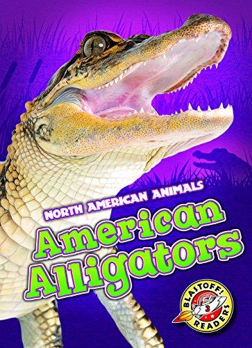 American Alligators (Blastoff Readers. Level 3)