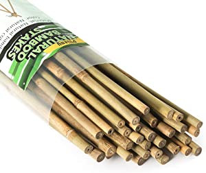 Pllieay 25 Pieces Natural Bamboo Stakes Garden Stakes for Indoor and Outdoor Gardening Plant Supports, 2 Feet
