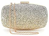 Yuenjoy Womens Evening Bags Wedding Clutch Purse Gradient Colors Glitter (Gold / Silver)