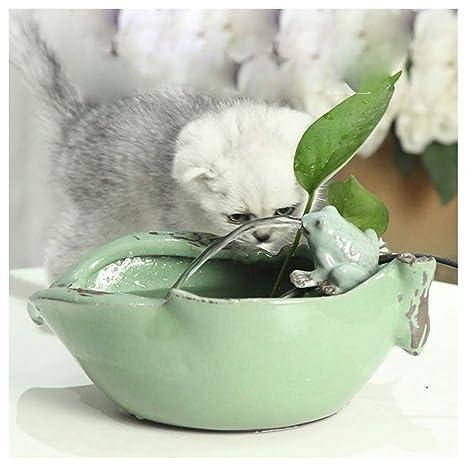 CATPETS Fuentes de Agua para Gatos Perros Mascotas Fuente de ...