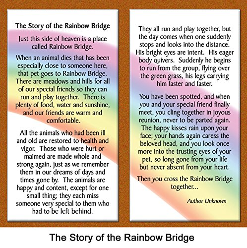 Pet-Lover-Remembrance-Gift-Rainbow-Bridge-Memorial-Pet-Loss-Picture-Frame-and-Sympathy-Gift-Package-with-optional-custom-photo-editing-Warm-White-with-Foil-Accent