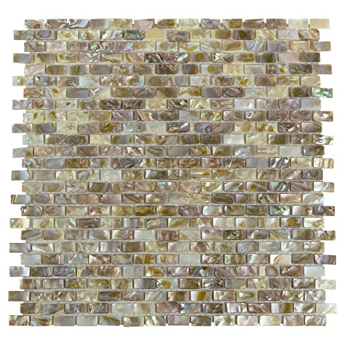 (SomerTile GITCSP Seashell Subway Perla Shell Mosaic Wall Tile, 11.75