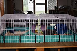 how to clean midwest guinea pig habitat
