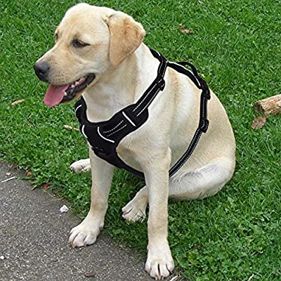 Dog Harness Medium Dogs, No Pull Dog Harness for Medium Dogs, Vehicle Harness Reflective Adjustable Dog Vest Chest Harness with Handle and Front Clip (Medium Size)