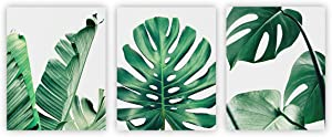 """Home Wall Art Décor Plants Posters Oil Paintings Posters Prints Watercolor Green Leaf Pictures Canvas Wall Art Wall Decorations 8"""" x 10"""" 3 Pieces (UNFRAMED)"""