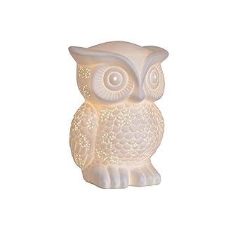 Stunning owl porcelain table lamp amazon lighting stunning owl porcelain table lamp mozeypictures Choice Image