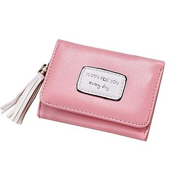 Doitsa Mujer Cartera (Piel sintética, Modo Simple pequeño Puerta Moneda para niña Étudiante, con borlas Elegante (Rosa): Amazon.es: Hogar