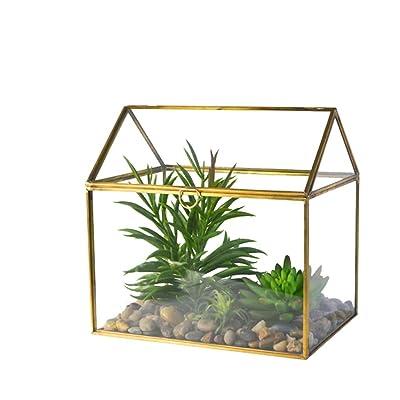 cobcob 【2020 New】-Flower House, Flower Pot Micro Landscape Plant Glass Plant Terrarium Brass Metal Frame Geometric Clear Terrarium Indoor Polyhedron Succulent Plant Planter Display (Gold): Garden & Outdoor