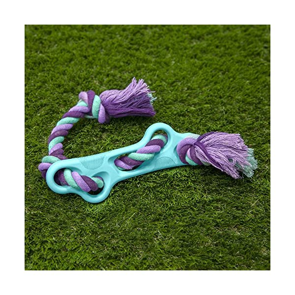 Chew King Training Natural Rubber Dog Toy 6