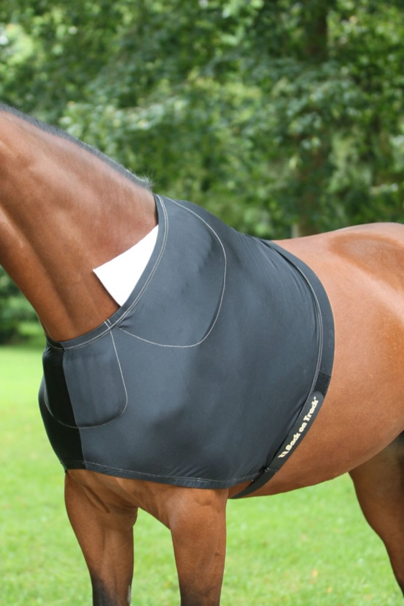 Back on Track Therapeutic Equine Shoulder Guard (75In)