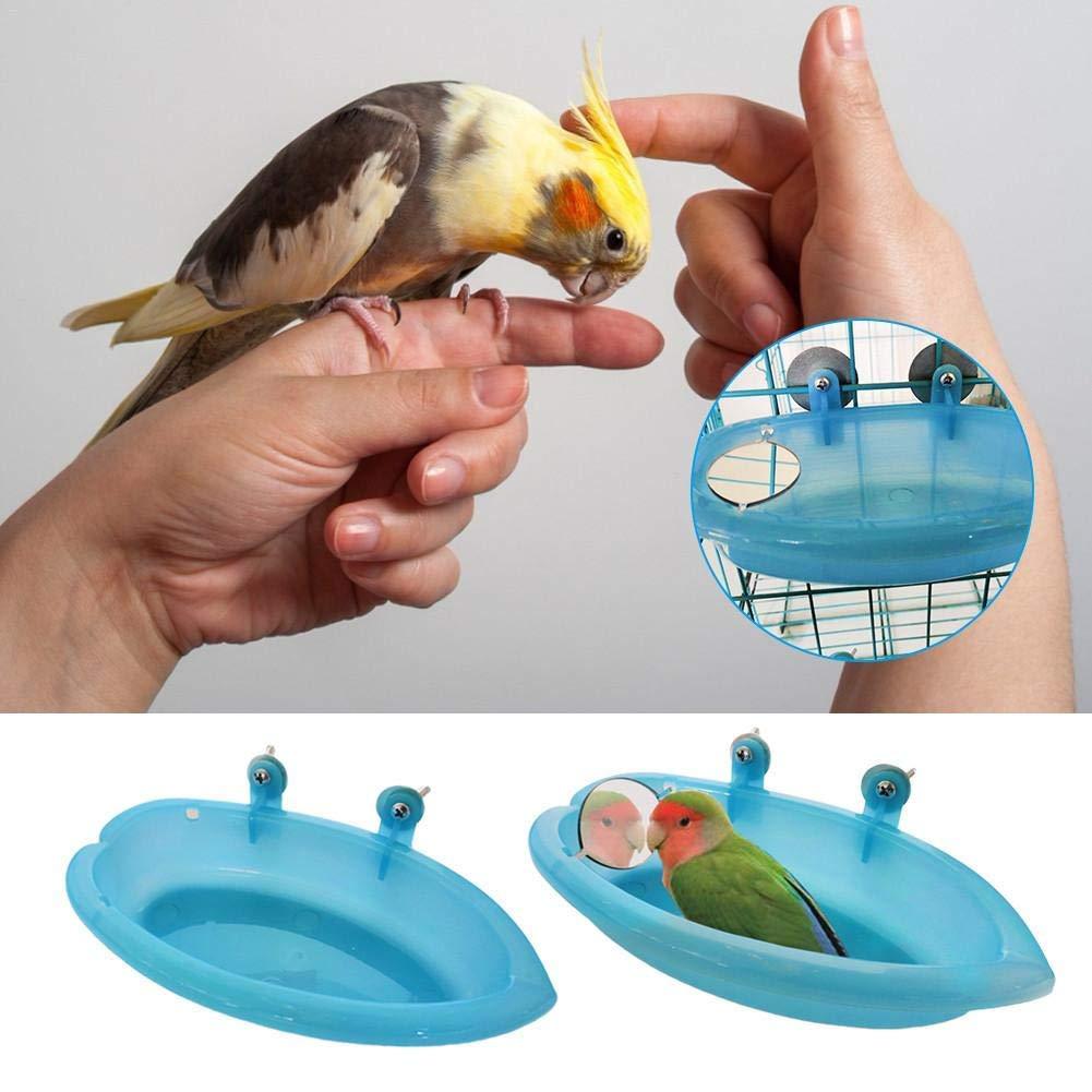 HINTER - Bañera para pájaros con Espejo, comedero de Alimentos ...