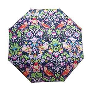 Creative flores y pájaros ilustraciones paraguas sombrilla anti-UV sol completo paraguas a prueba de viento plegable marca lluvia Gear