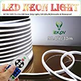 LED NEON LIGHT, IEKOV ™ AC 110-120V LED flexible luces de neón, 120 LED / M, regulable, impermeable 2835 SMD LED cable luz + mando a distancia para decoración de fiestas (98.4ft / 30m, blanco)