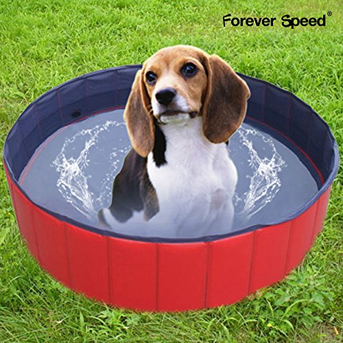 SPEED chien piscine Pet piscine portable et résistant en 80/120/160 CM 160 * 30 cm rouge