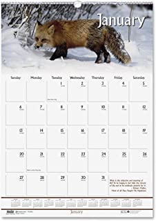 product image for HOD373 - House Of Doolittle Wildlife Scenes Monthly Wall Calendar