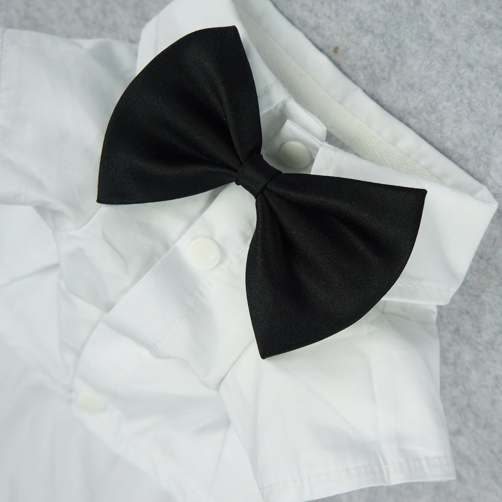 Fitwarm Pet Wedding Clothes Formal Tuxedo White Shirts for Dog with Bow tie White XL by Fitwarm (Image #3)