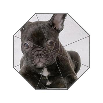 lifei negocios francés Bulldog personalizado paraguas