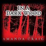 In a Dark Wood | Amanda Craig