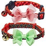 Blueberry Pet Cat Collars, Harnesses & Leashes