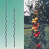 Tomatenspiralstab Größe wählbar verzinkt 10 Stück [110 cm]
