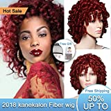 Short Curly Hair Wigs Andromeda Synthetic Afro Curly Hair Wig for African American Black Women High Resistance Fiber Hair Wig14'' 195g (Red)