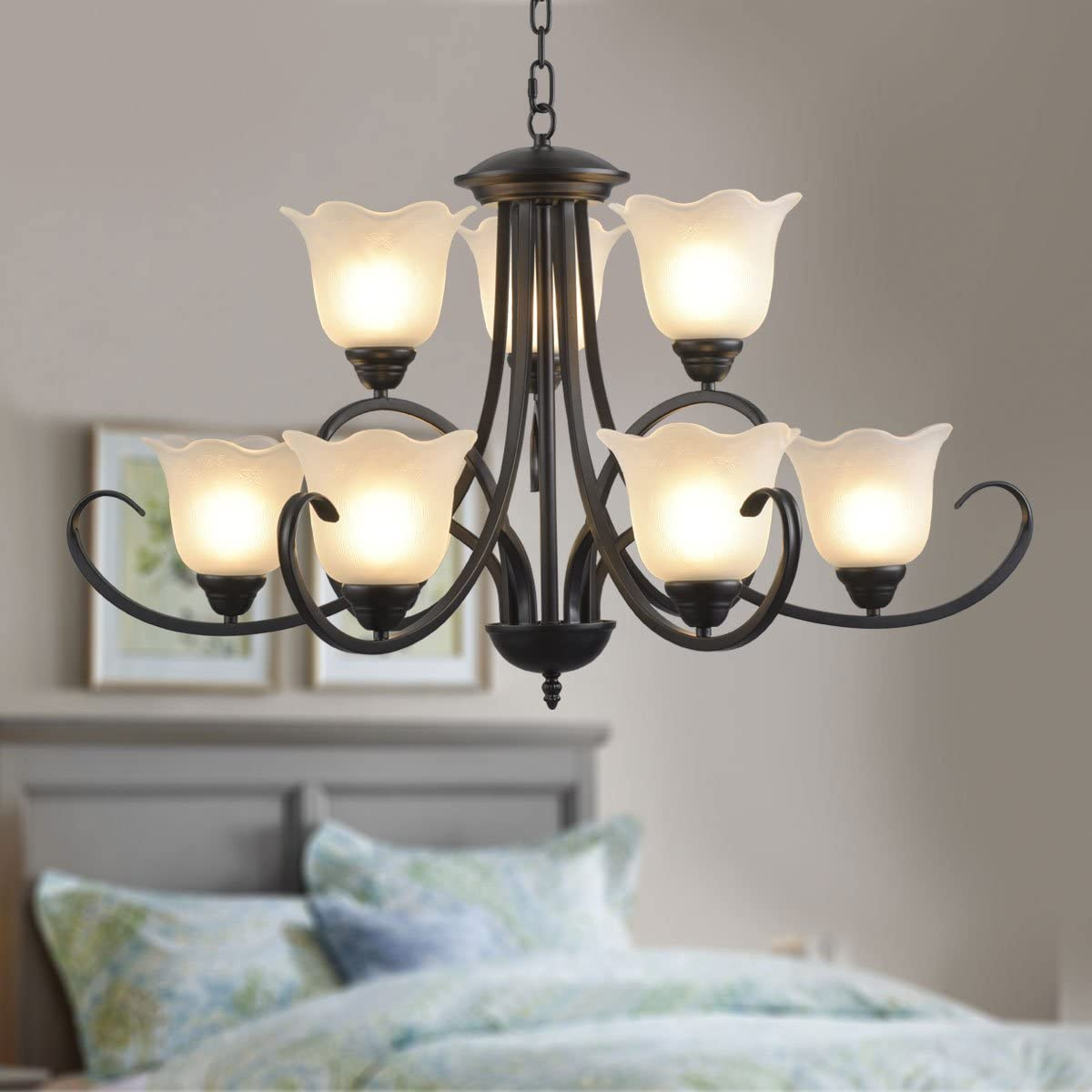 9-Light Black Wrought Iron Chandelier with Glass Shades E-8019-6 3