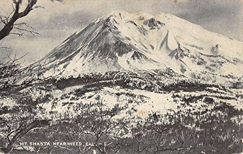 Weed California Mt Shasta Birdseye View Antique Postcard K49619