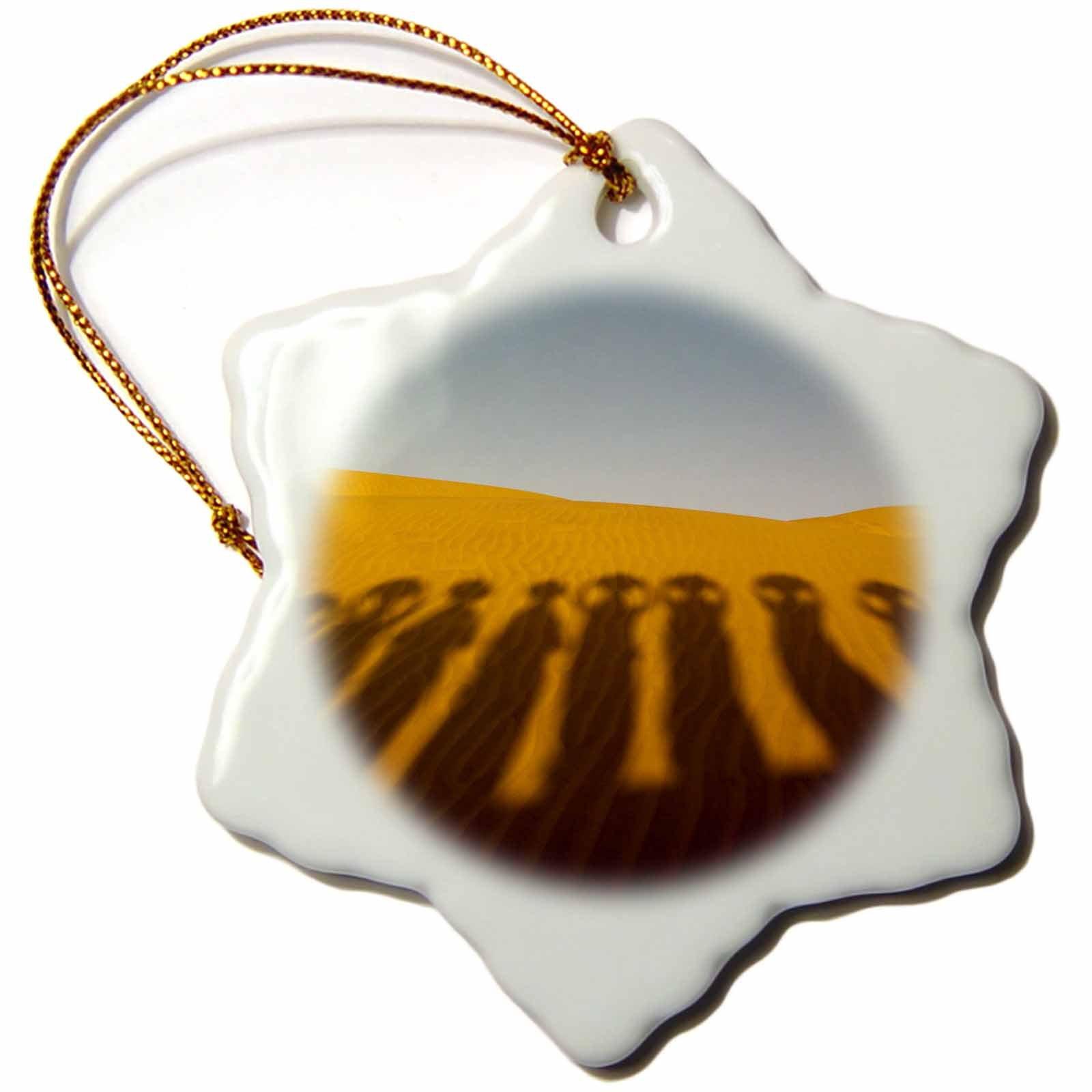 3dRose Danita Delimont - Travel - Shadows of waterbearers, Thar Desert, India - 3 inch Snowflake Porcelain Ornament (orn_276773_1)