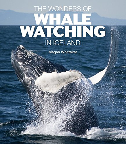 Download The Wonders of Whale Watching in Iceland pdf