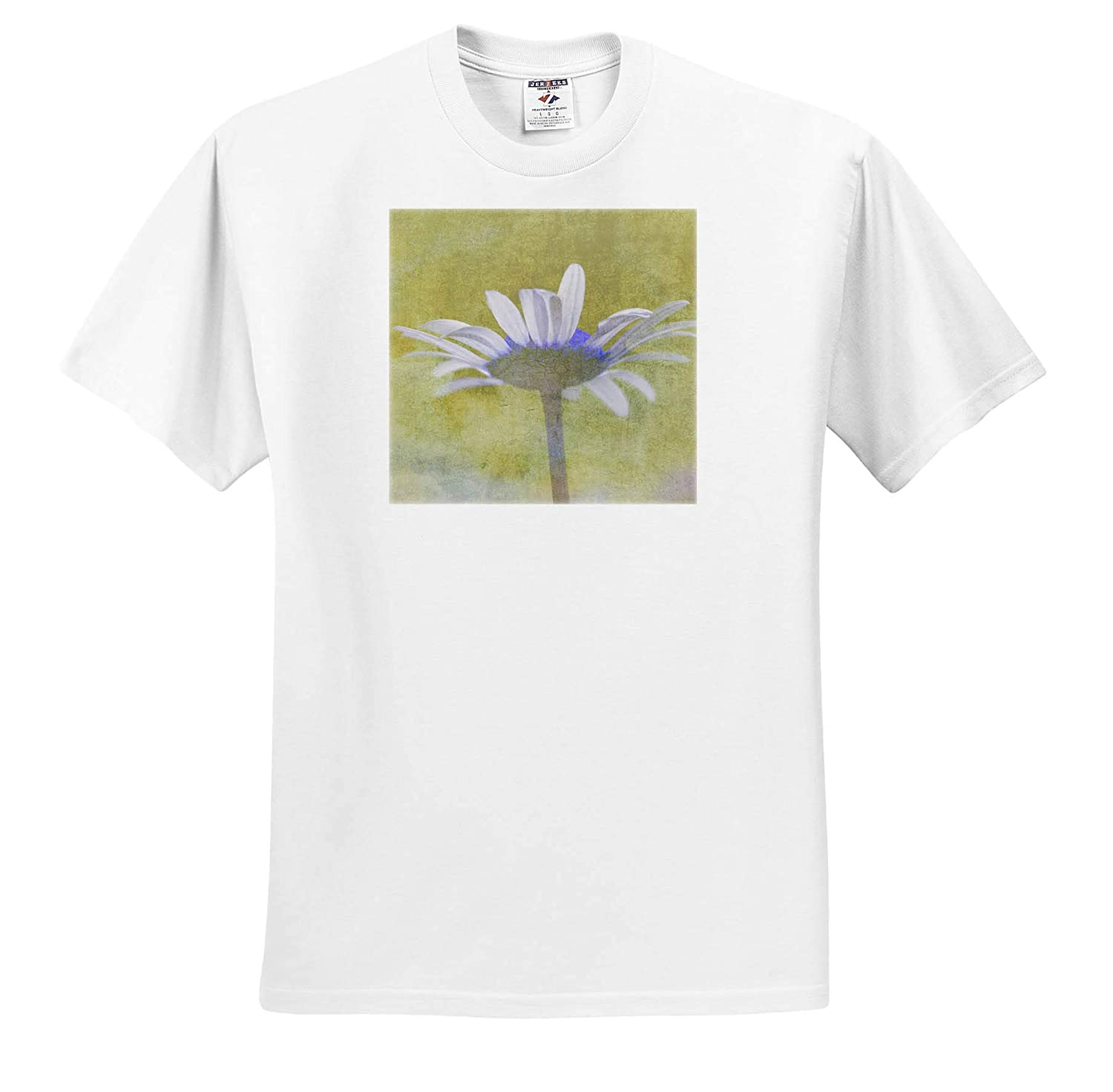 3dRose Danita Delimont Oxeye Daisy composited with Textured Background Adult T-Shirt XL ts/_313899 Flowers