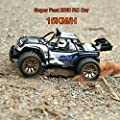 Distianert Electric RC Car Offroad Remote Control Car RTR RC Buggy RC Monster Truck 1:16 2WD 2.4Ghz High Speed with Rechargeable Battery from Distianert