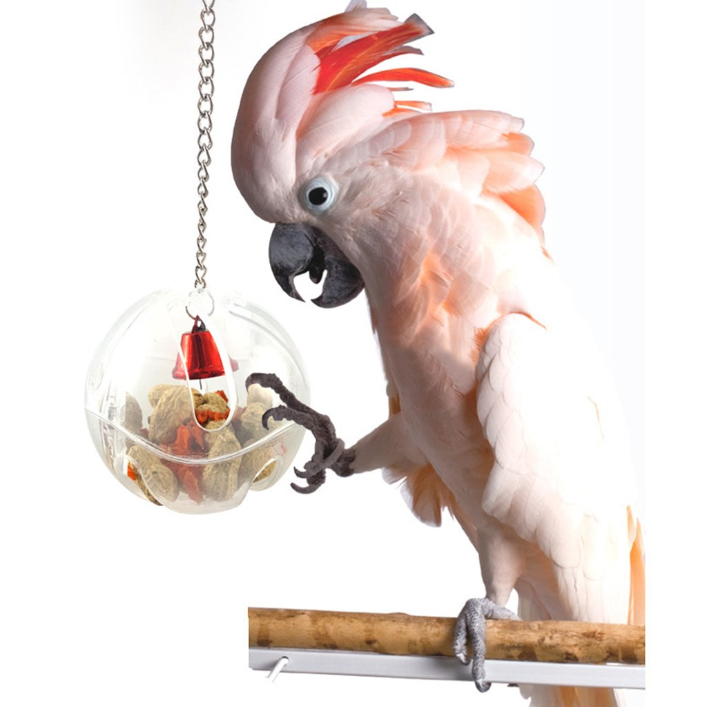 TOUGH GIRL Hang Foraging Food Container Bird Feeders Parrot Toy Pet Treat Hunt Macaw Cockatoo Acrylic Bird Supplies Bird Feeder for Parrots (Bird Feeder)