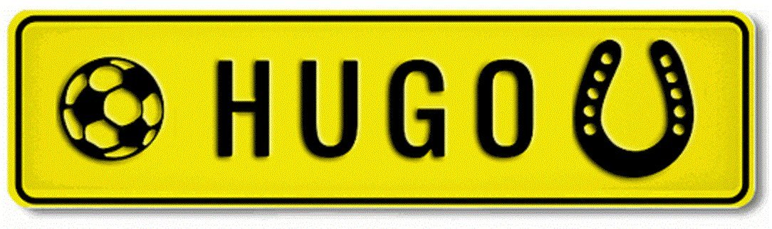 Autoschild mit Namen /& Spruch selbst gestalten Individuelles Namensschild Aluminium-Schild Gepr/ägtes Nummernschild zum Selbstgestalten ✓ Witterungsbest/ändig ✓ Vielfarbig ✓ Ideale Geschenkidee Aluschild Kfz-Kennzeichen-Schilder mit Wunschte