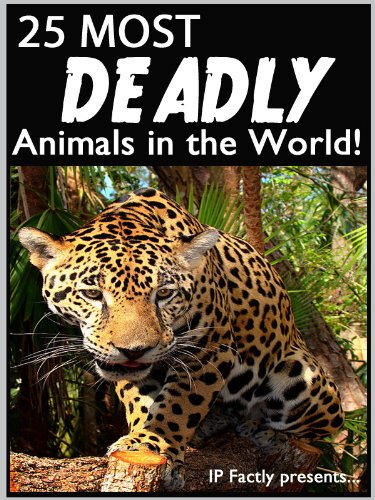 25 Most Deadly Animals in the World! Animal Facts, Photos and Video Links. (25 Amazing Animals Series Book 7) (The Most Deadly Shark In The World)
