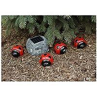 e-Joy Solar Ladybug Outdoor Garden String Lights, Solar Powered LED Garden Decorative Landscape Lights, Red Color by e-joy