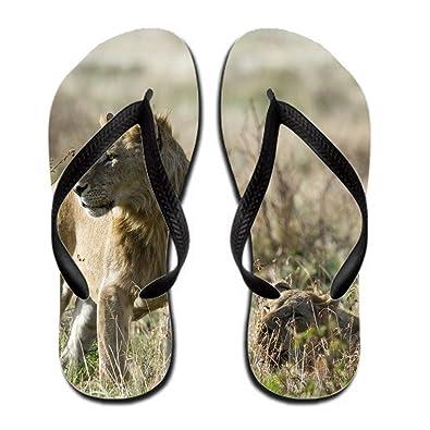 351388f59d0 Amazon.com | Animal Lion Men Colorful Flip Flop Rubber 13 B(m) Us ...