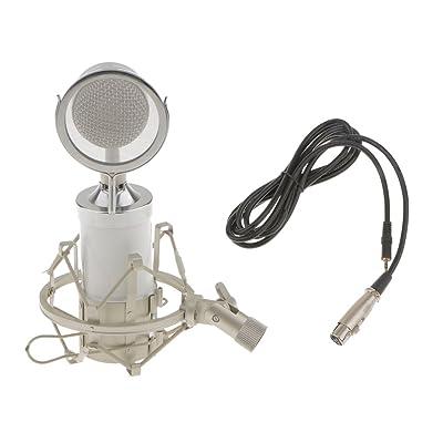 NON Conjunto De Micrófono Montura Choque Cable Audio USB Filtro De Pantalla Viento - Blanco: Juguetes y juegos