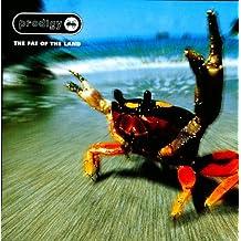 Fat of the Land (UK Pressing) [2LP Vinyl]