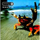 Fat of The Land (Vinyl) [Importado]