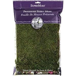 Super Moss 21512 Preserved Sheet Moss, Fresh Green, 8oz (200 cubic inch)