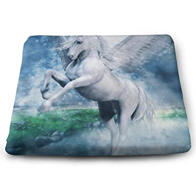 Sanghing Customized Fantasy White Pegasus Flying Over A Lake 1.18 X 15 X 13.7 in Cushion, Suitable for Home Office Dining Chair Cushion, Indoor and Outdoor Cushion.: Home & Kitchen